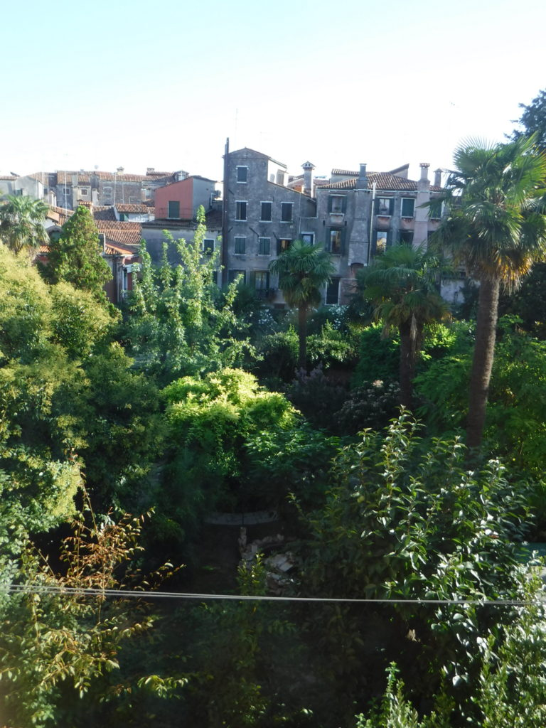 The view from my hostel - a rare look at Venetian green space